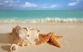 Picture sand, sea, wave, beach, summer, the sky, water, clouds, nature, the ocean, shore, star, beauty, ...