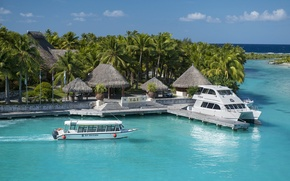 Picture boats, palms, resort, bungalow, bora-bora, St-Regis