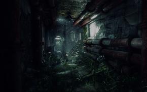 Picture Apocalypse, devastation, chaos, Tom Clancy's, Ubisoft Entertainment, The Division
