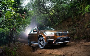Picture BMW, BMW, crossover, F49