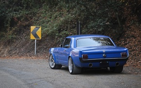Picture Mustang, Blue, Custom