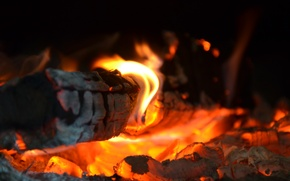 Picture fire, red, yellow, wood, heat, hot coals