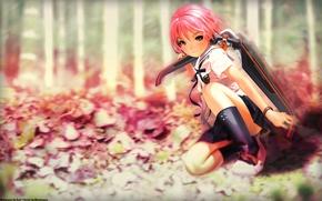 Picture pink, Kuniko, HOJO, Shangri-La