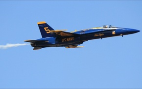 Picture USA, sky, wallpapers, air, five, Blue Angels