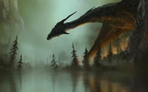 Picture fiction, fire, fire, dragon, smoke, wings, art