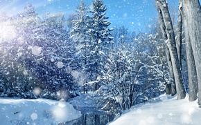 Picture winter, forest, the sky, water, the sun, snow, trees, snowflakes, glare, blue, the snow, river