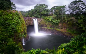 Picture forest, trees, rock, tropics, waterfall, Hawaii, USA, Hilo