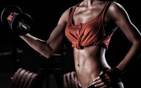 Wallpaper dumbell, female body, fitness, toning