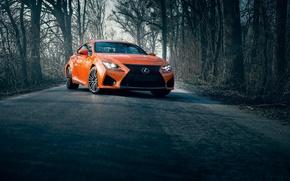Picture lexus, road, orange, rcf