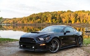 Picture Mustang, Ford, Mustang, Ford, 2014, Roush Stage 2