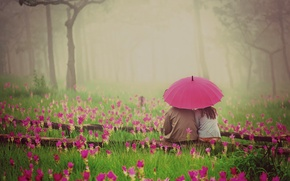 Picture flowers, widescreen, HD wallpapers, Wallpaper, umbrella, greens, love, background, woman, widescreen, nature, pink, pair, grass, ...