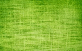 Picture green, texture, background, gauze