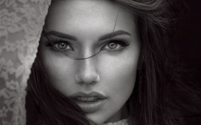 Picture eyes, look, girl, face, hair, portrait, black and white photo