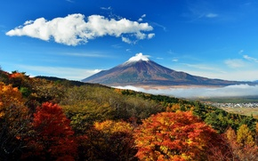 Wallpaper trees, Japan, autumn, mount Fuji, hills, the sky, valley, clouds