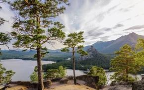 Wallpaper trees, mountains, lake, pine, Kazakhstan, Borovoe lake, The Kokshetau height