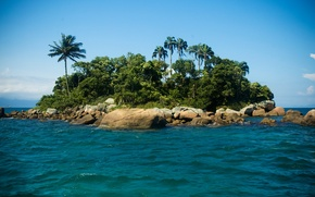 Picture sea, wave, water, Islands, palm trees, the ocean, landscapes