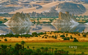Picture mountains, lake, river, palm trees, rocks, island, Africa, Northern Chad, Ounianga Serir