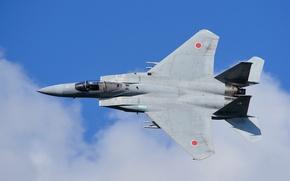 Picture flight, fighter, Eagle, Japanese, McDonnell Douglas, F-15J