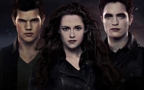 Picture Kristen Stewart, Robert Pattinson, Black, movie, screen, room, Taylor Lautner, Edward, hd wallpaper, Jacob, The …