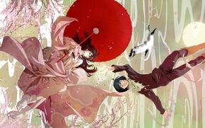 Picture the sky, the sun, flight, umbrella, Sakura, guy, kimono, flowering, crane, A Homeless God, Yato, …