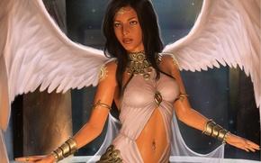 Picture pose, angel, art, angel, girl. look. wings