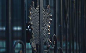 Picture metal, castle, the fence, grille, forging