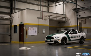 Picture Mustang, Ford, Dubai, Police, Roush