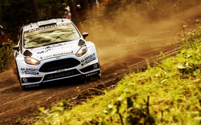 Picture Ford, Forest, Ford, Skid, WRC, Rally, Rally, Fiesta