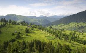 Wallpaper hills, trees, clouds