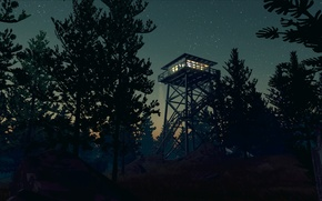Picture The sky, The evening, Night, Stars, Trees, Forest, Ladder, Light, Fire, Tower, Exploration, Adventure Game, ...