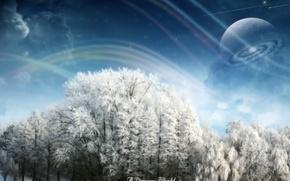 Wallpaper trees, snow, Dreamy World, winter