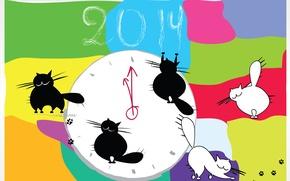 Picture cat, graphics, color, 2014