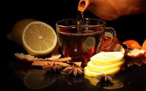 Picture lemon, tea, Cup, cinnamon, peel