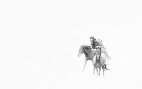 Picture storm, winter, snow, horses, wind