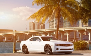 Picture white, the sky, clouds, bridge, the city, Palma, coast, Chevrolet, Camaro, white, Chevrolet, muscle car, …