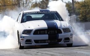 Picture machine, auto, smoke, shelby, ford mustang
