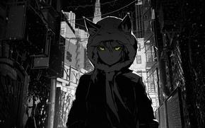 Picture girl, snow, the city, darkness, street, hood, lane, arsenixc