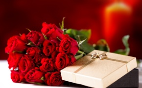 Picture flowers, holiday, gift, roses, bouquet, red roses