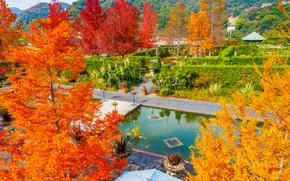 Picture autumn, leaves, trees, Park, paint, Japan, the crimson, Tamano
