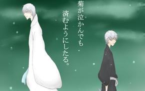 Picture Bleach, bleach, Gin Ichimaru