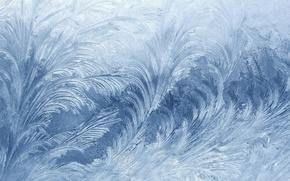 Picture ice, winter, patterns, beautiful, texture