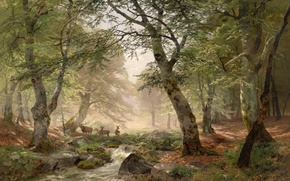 Picture forest, trees, stream, stones, figure, deer