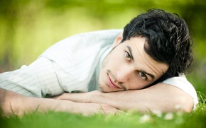 Picture grass, look, guy, green-eyed, brunette