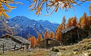 Picture autumn, mountains, Alps, Italy, Italy, Cogne, Valle d'aosta, sheds