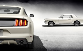 Picture Mustang, Ford, 1965, White, 2015, 50 Year Limited Edition
