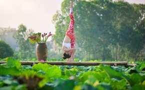 Picture girl, gymnastics, yoga, Asian