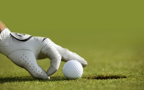 Picture Golf, glove, golf ball