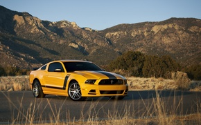 Picture Ford, ford mustang, muscle car, rechange, boss 302