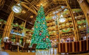 Picture design, lights, holiday, tree, interior, CA, New year, USA, Disneyland, garland, Christmas, Balaclava, hall.arch