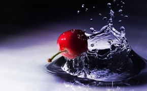 Picture water, drops, macro, squirt, cherry, berry, the fruit